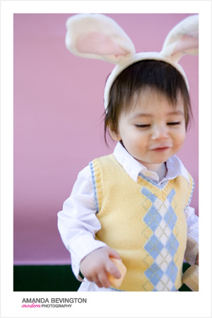 bunny_02.jpg